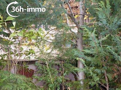 Maison a vendre Allons 04170 Alpes-de-Haute-Provence 43 m2 2 pièces 26750 euros