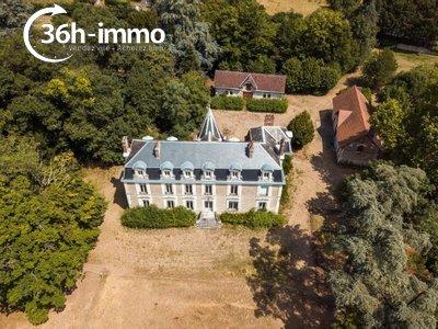 propriete a vendre Valloire-sur-Cisse 41150 Loir-et-Cher 600 m2 15 pièces 787500 euros